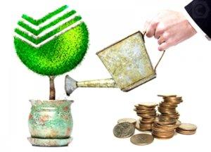 капитализация вклада в Сбербанке